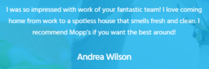 Mopps Customer Review